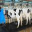 Manejo de máquinas agrícolas de accionamiento y tracción