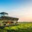 El tractor y equipo de tracción en horticultura y floricultura